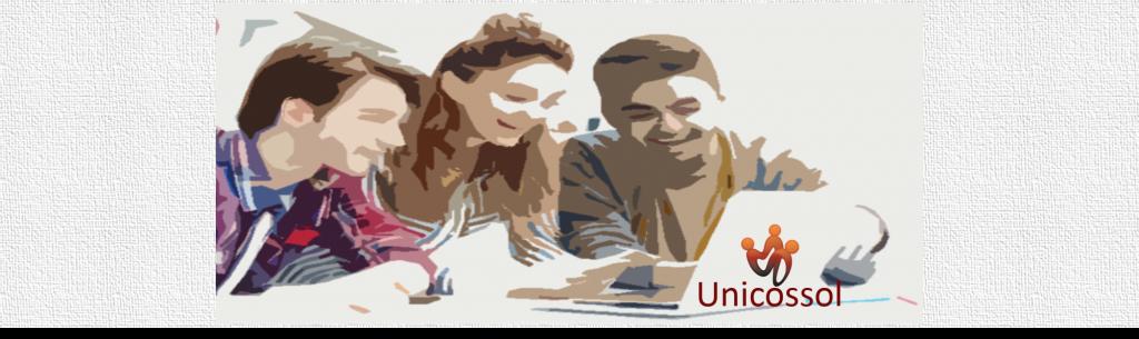 Unicossol Lineas de Accion
